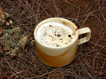 Wild Coffee. A beautiful cup of coffee on the ground Royalty Free Stock Photos