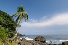 Wild Colombian Caribbean coast near Capurgana Royalty Free Stock Images