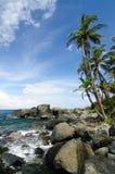 Wild Colombian Caribbean coast near Capurgana Royalty Free Stock Photos