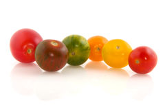 Wild colorful tomatoes Royalty Free Stock Photo