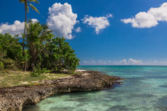 Wild coral tropical beach, Saona Island, Caribbean Sea Stock Images
