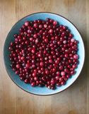 Wild cranberries in ceramic bowl Royalty Free Stock Images