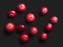 Wild cranberries, top view,  paths. Wild cranberries Vaccinium oxycoccus on black, top view. Clipping paths, shadow separated Royalty Free Stock Photo