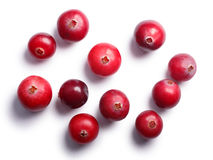 Wild cranberries, top view,  paths Royalty Free Stock Image