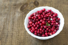 Wild cranberry on wooden texture. Wild, red cranberry on white plate, on wooden texture Royalty Free Stock Image