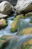 Wild creek. Creek in the wild south France Royalty Free Stock Photo