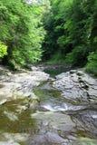 Wild Creek Stock Photo