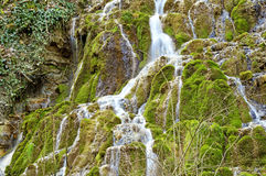 Wild creek falling down a hill Royalty Free Stock Image