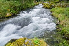 Wild creek in the norwegian wilderness Royalty Free Stock Photos