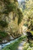 Wild creek Stock Images