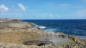 Wild Curacao - Suplado Jacuzzi stock video