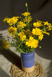 Wild daisy bouquet in ceramic vase Stock Photos