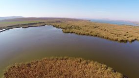 Wild Danube Delta aerial stock video