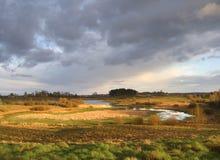 Wild de lentelandschap Stock Foto
