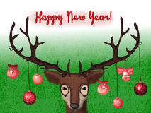 Wild deer congratulate you with a New Year! Stock Photos