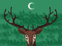 Wild deer standing in the forest under a moon Royalty Free Stock Images