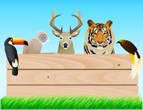 Wild dierlijk etiket Stock Foto