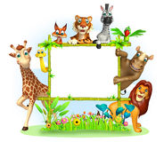 wild djur Arkivfoton