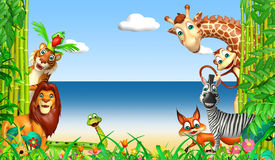 wild djur Arkivbild