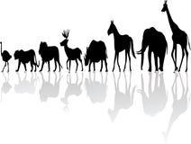 Wild djur silhouette Arkivbild