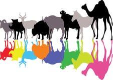 wild djur silhouette Arkivfoto