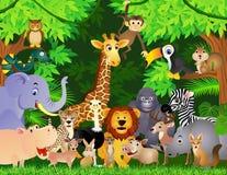 wild djur tecknad film Arkivbilder