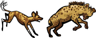 Wild Dog Chasing a Hyena. Illustration of a Cape Hunting Dog or African Wild Dog chasing a Spotted Hyena, trying to bite its butt Royalty Free Stock Image