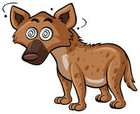 Wild dog with dizzy face Stock Image