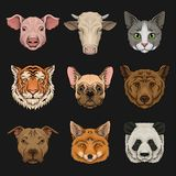 Wild and domestic animals set, heads of pig, cow, bulldog, cat, bear, pug, tiger, fox hand drawn vector Illustrations stock illustration