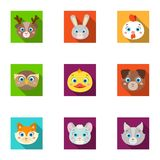 Wild and domestic animals. A set of pictures about animals. Animal muzzle icon in set collection on flat style vector. Wild and domestic animals. A set of Stock Image