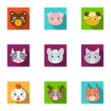 Wild and domestic animals. A set of pictures about animals. Animal muzzle icon in set collection on flat style vector. Wild and domestic animals. A set of Royalty Free Stock Images