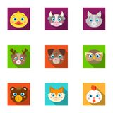 Wild and domestic animals. A set of pictures about animals. Animal muzzle icon in set collection on flat style vector. Symbol stock web illustration Royalty Free Stock Image