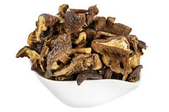 Wild and dried mushrooms placed in a dish Stock Image