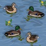 Wild Ducks Seamless Texture Royalty Free Stock Photo
