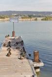 Wild ducks sitting on wooden pier. Lake Balaton, Hungary. Group of wild ducks sitting on a wooden pier. Lake Balaton, Keszthely, Hungary Stock Photo