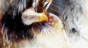 Wild eagle,  fractal effect. Royalty Free Stock Photo