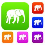 Wild elephant set collection Royalty Free Stock Photography