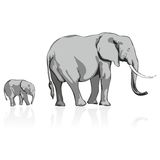 Wild elephants. Fully editable  illustration of wild elephants Stock Images