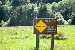 Wild Elk Sign: Do Not Approach Stock Photo