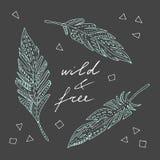 Wild en vrij Stock Foto's