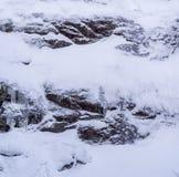 Wild en wit landschap in Val David stock foto