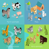 Wild Exotic and Farm Animal Set Isometric Royalty Free Stock Image