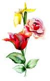 wild färgrika blommor Arkivfoton