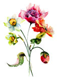 wild färgrika blommor Fotografering för Bildbyråer