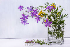 Wild field flowers in a glass of water on white background. Field flowers in a glass of water on white background Royalty Free Stock Photo