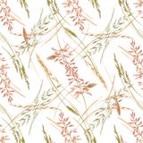Wild field grass vector pattern. Beautiful vector seamless pattern with hand drawn watercolor wild field grass Stock Image