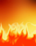 Wild Fire Royalty Free Stock Photography