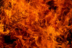 Wild fire Royalty Free Stock Photos