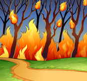 Wild fire in the forest. Illustration Royalty Free Stock Photos