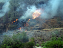Wild fire near Yosemite National Park grass fire. Flames and smoke wild fire near Yosemite National Park Royalty Free Stock Image